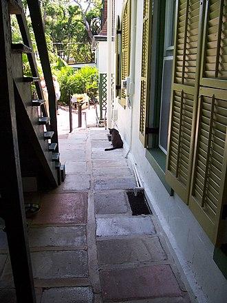 Ernest Hemingway House - Image: Hemingway Alley Cat