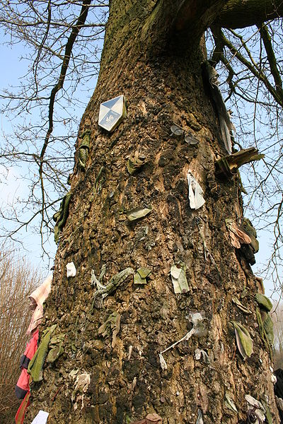 Herchies  (Belgium), sentier des Chats – The Saint Anthony of Padua oak tree with her ex-voto.