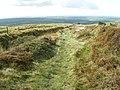 Hill track, near Rosebush - geograph.org.uk - 1000898.jpg