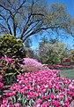 Hillwood Gardens in April (17597737175).jpg