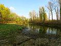 Hlyboke lake Muromets6.JPG