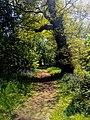 Hodsock Priory, Near Blythe, Notts (45).jpg