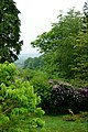 Hollycombe Steam Collection (14267187846).jpg