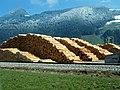 Holzberge vs. Alpenberge (Sägewerk in Schlitters, Zillertal) - panoramio.jpg