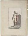 Homo sapiens - Albino - 1700-1880 - Print - Iconographia Zoologica - Special Collections University of Amsterdam - UBA01 IZ19600180.tif