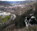 Horb am Neckar.png