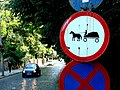 Horse and Cart Crossing - Sighisoara - Romania.jpg