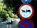 Horse and Cart Crossing - Sighisoara - Romania.jpg