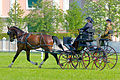Horse driving at Stiegl 2011 11.jpg