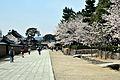 Horyuji Temple 12.JPG