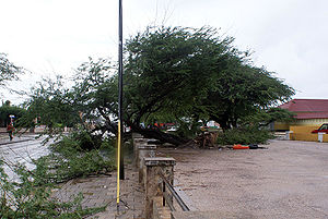 Hurricane Omar - Image: Hurricane Omar damage in Aurba
