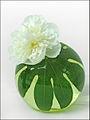 Ikebana (Madrid) (4652801831).jpg