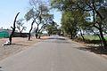 Indian National Highway 86 - Madhya Pradesh - 2013-02-21 4236.JPG