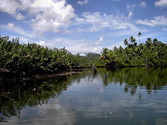 Saint John Parish, Dominica - Indian River, near Portsmouth