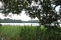 Ismeru ezers, Lūznavas pagasts, Rēzeknes novads, Latvia - panoramio.jpg