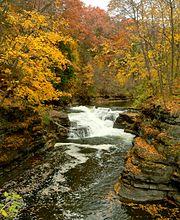 Ithaca Hemlock Gorge