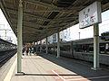 JRKyushu-Nagasaki-main-line-Saga-station-platform-3-4-20091031.jpg