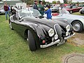 Jaguar XK 120 Sports.jpg