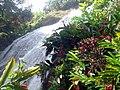 Jamaica - panoramio (21).jpg