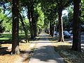 Jardin du Ranelagh3.JPG