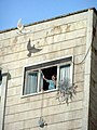 Jerusalem Ben Yehuda Street mural closup bird at the window.jpg