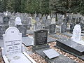Jewish cemetery at Tongerseweg Begraafplaats 20110313.JPG