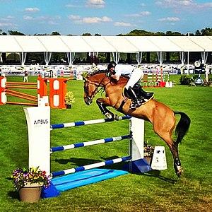 Chantilly Jumping - John Whitaker (equestrian) at Chantilly Jumping in 2015