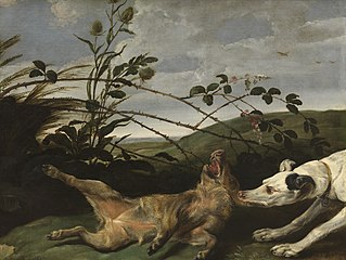 A Greyhound Catching a Young Wild Boar