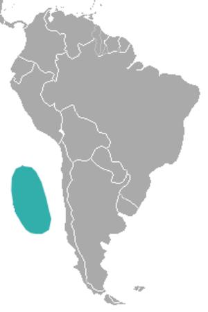 Juan Fernández fur seal - Image: Juan Fernandez Fur Seal area