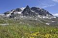 Julierpass - panoramio (6).jpg