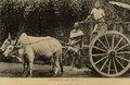 "KITLV - 1404766 - Lambert & Co., G.R. - Singapore - ""Bullock-cart and driver."" Possibly in Singapore - 1906-1935.tif"