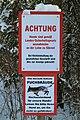 Kaiserwald Fuchsräude.jpg
