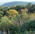 Kalmit - panoramio (6).jpg