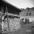 Kazu (kozolec) z odrnco za obkladanje, Cerkljanski Vrh 1954.jpg