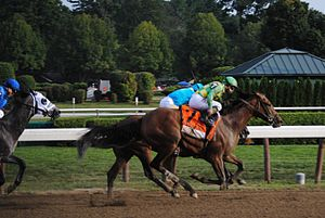 Keen Ice - Keen Ice passes American Pharoah in the 2015 Travers Stakes