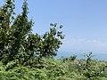 Kepi i Rodonit, Gjiri i Lalezit - Durres Albania 11.jpg