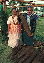 Yam (vegetable) - Wikipedia, the free encyclopedia
