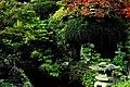 Kildare - Japanese Gardens - geograph.org.uk - 1605544.jpg