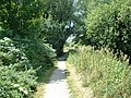 King's Way Path, Winchester - geograph.org.uk - 27805.jpg