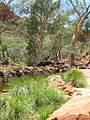 Kings canyon green creek.jpg