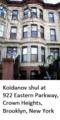 Koidanov Shul Brooklyn.png