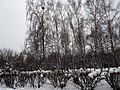 Kolomenskoye in winter 04.jpg