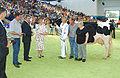 Koningin Beatrix NRM 2006 , alg kampioen ZB JT Milenium en fam Tijhuis.jpg