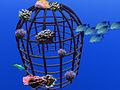 Kuppel mit Fischen und Korallen.jpg