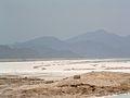 Lac Assal 2.JPG