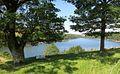 Lac du maury à Saint-Amans-des-Côts.jpg