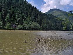 Lacul Rosu 091.jpg