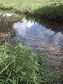 Lago en Villa Mar en Juan Griego 2.JPG