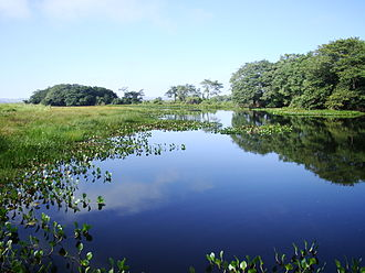 Ilha Grande National Park - Image: Lagoa Saraiva localizada no Parque Nacional de Ilha Grande