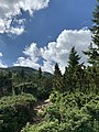 Landscape of the Carpathians.jpg